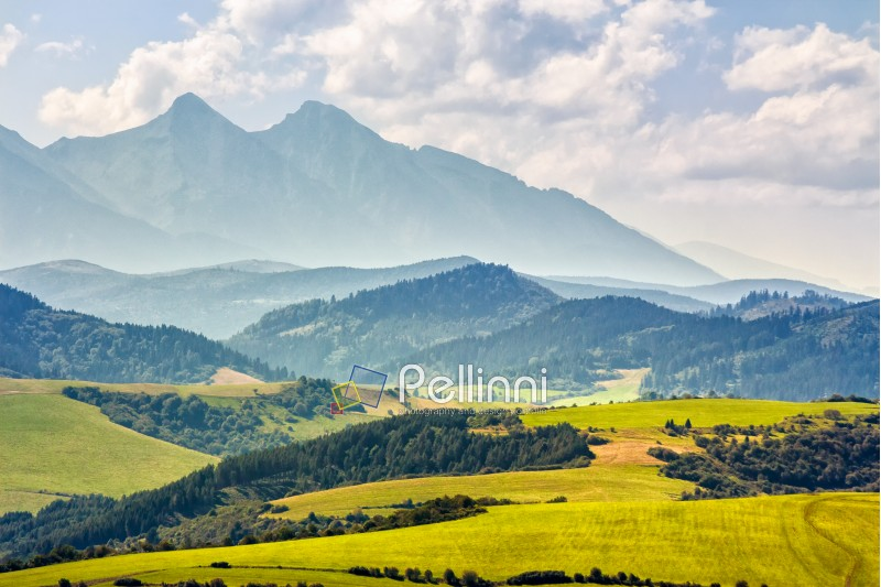 Rural landscape with fields and forest at the foot of Tatra mountains in Slovakia