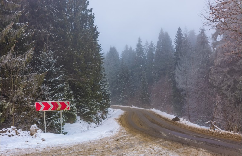 asphalt road through spruce forest in fog. transportation winter background with road sign