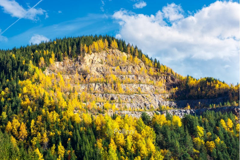 beautiful autumn background. forested hills in evening. rock quarry on hillside