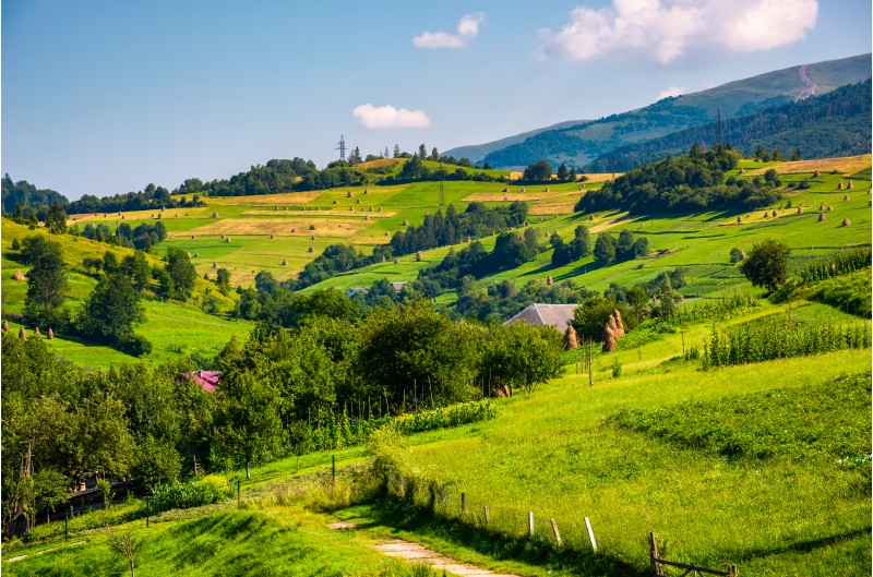 beautiful countryside in summertime. haystack on grassy hillsides of Carpathian mountain