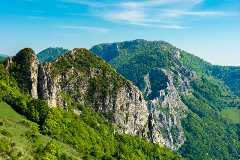 beautiful landscape of romania mountains. forested hills and huge cliffs of canyon. wonderful nature scenery. sunny weather in springtime