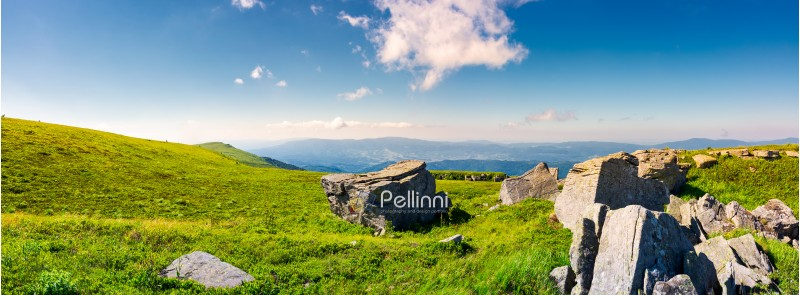 beautiful panorama of Runa mountain in summer. huge rocky formation on the hillside and peak in the distance. wonderful landscape of Carpathians