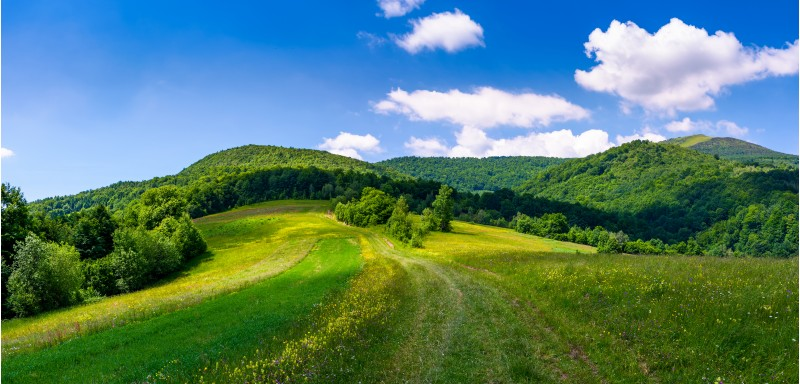 beautiful panorama of mountainous countryside. lovely summer scenery in fine weather condition. rural fields at the edge of a forest on hillside. road down the hill in to the distance