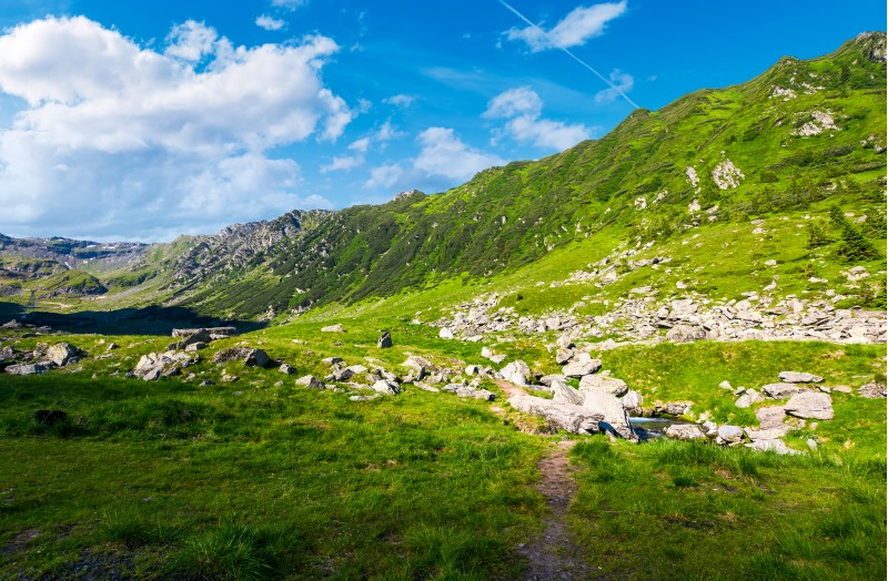 beautiful valley of Fagaras mountains. small brook flow among the rocks. grassy slopes with huge boulders