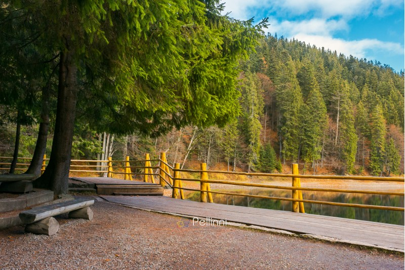 bench on the wooden pier of Synevyr lake in autumn. wonderful nature scenery in good weather