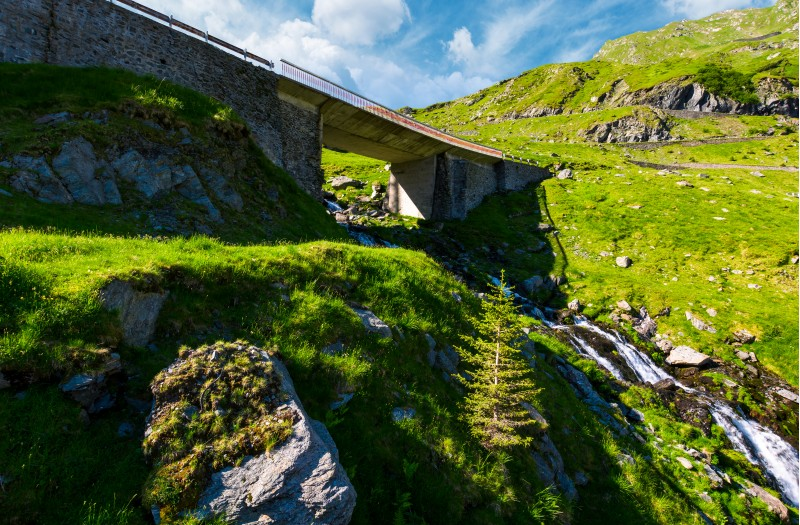 bridge over the brook in mountains. beautiful transportation scenery in summer landscape. location Transfagarasan rout of Romania