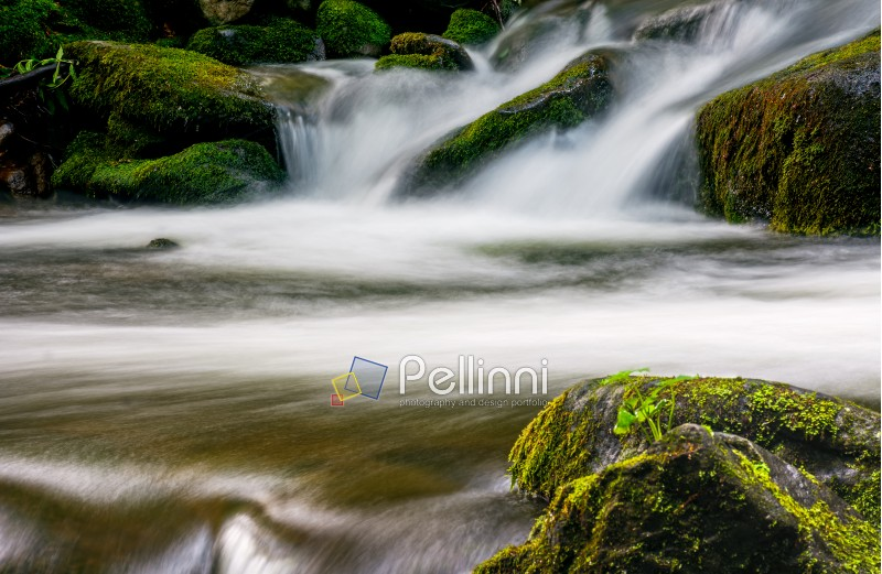 small cascades on the forest river among huge bouders covered with moss. taken with long exposure. beautiful fresh nature background