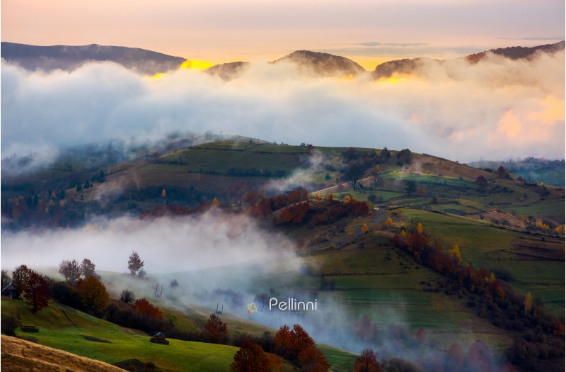 cloud inversion in autumn mountains at dawn. beautiful nature scenery. fog rolling above the rural fields