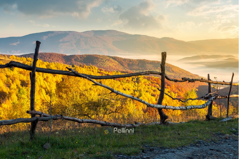 fence on the country road at sunrise. beautiful autumn scenery at sunrise. forest in golden foliage and fog in the distant valley