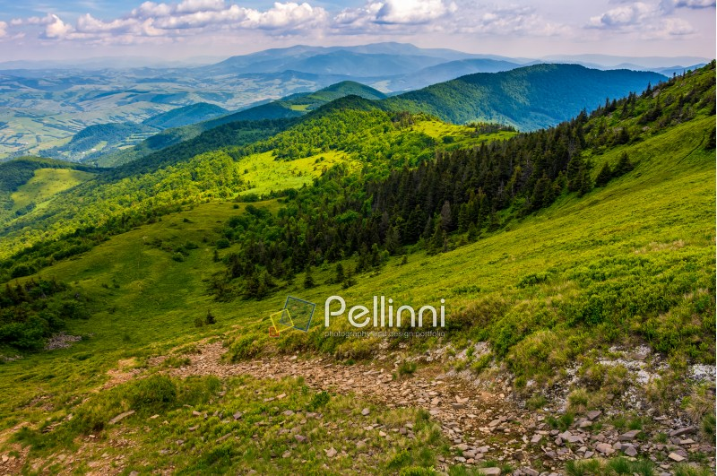 summer mountain landscape. footpath down the hill through forest on mountain ridge to valley. beautiful Carpathian nature scene