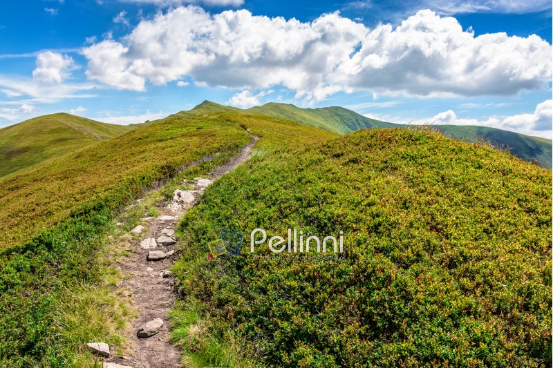 summer mountain landscape. foot path through hill side to the mountain top