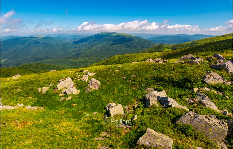 fresh summer forenoon scenery in mountains. beautiful with boulders on the grassy hill under the blue sky with some clouds.