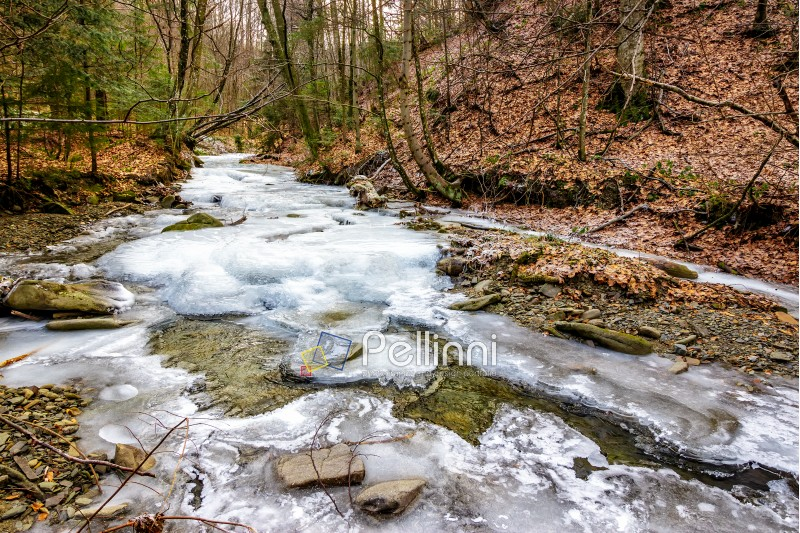 frozen river among the forest  in carpathian mountains