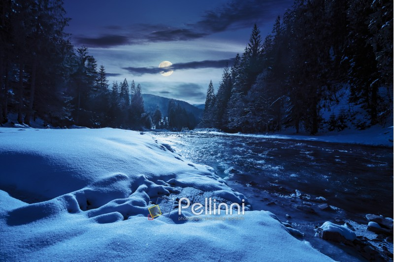frozen river among conifer forest with snow on the ground in carpathian mountains at night in full moon light