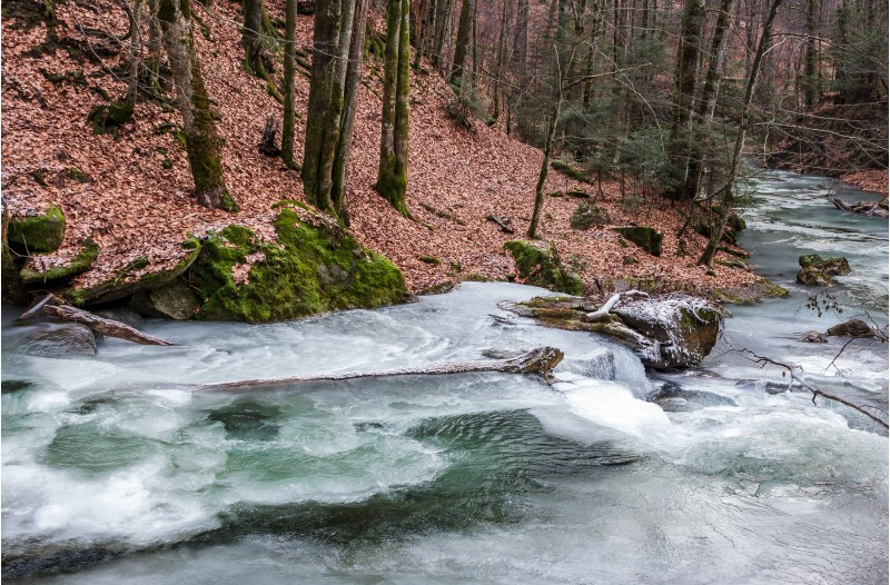 frozen river in forest with no snow. undefined nature condition