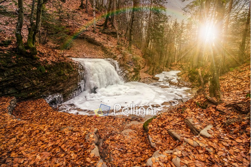 frozen waterfall on the  river among forest with old brown foliage on the ground in evening light