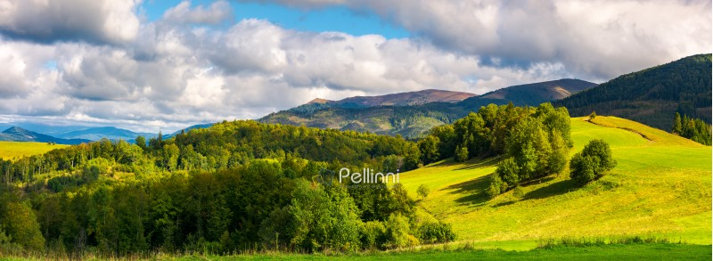 gorgeous panorama of mountainous landscape. woods and grassy alpine meadow in evening light. distant ridge banath a heavy cloud on a blue sky