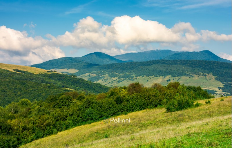 grassy hills and distant mountain peaks. lovely countryside landscape of  carpathians