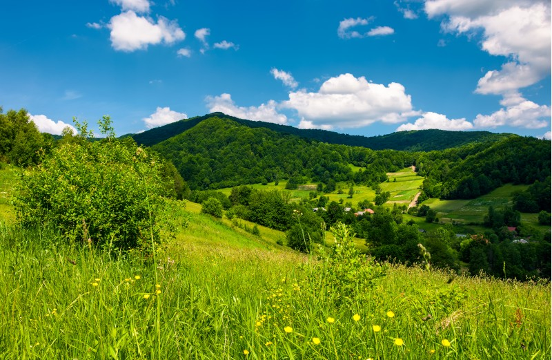 grassy hillside of mountainous countryside. lovely summer scenery with village in a green valley