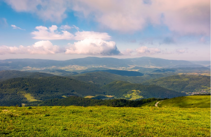 grassy meadow on hillside on a cloudy day. beautiful mountainous landscape in summertime. location Runa mountain, Ukraine