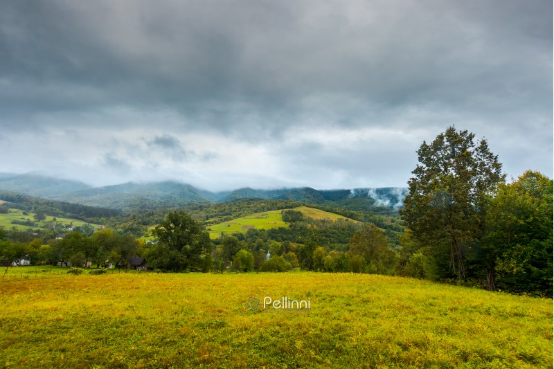 grassy rural meadow in mountains. rainy september weather. distant ridge in clouds and haze