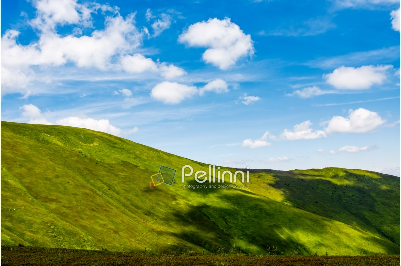 green alps under blue sky. gorgeous mountainous landscape with fresh grassy hills in summer. eternity concept
