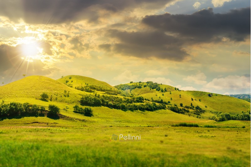 green hill in summer landscape at sunset in evening light. beautiful countryside scenery.  tilt-shift and motion blur effect applied.