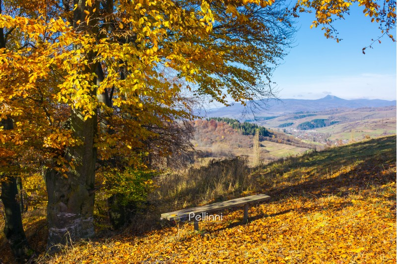 handmade wooden bench under the tree in fall colors. beautiful view in to the distant mountain. wonderful autumn scenery