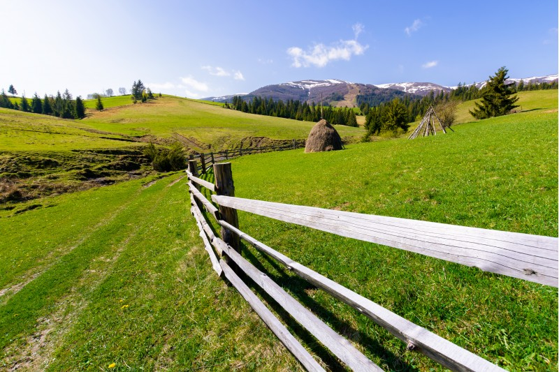 haystack behind the wooden fence on a grassy hill. beautiful Carpathian countryside in springtime. mountain ridge with snowy tops in the distance