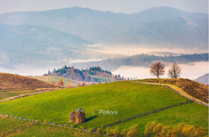 haystack on rural fields in foggy mountainous area. beautiful countryside landscape in autumn. forested hill and valley in fog behind the nearest knoll on a bright forenoon