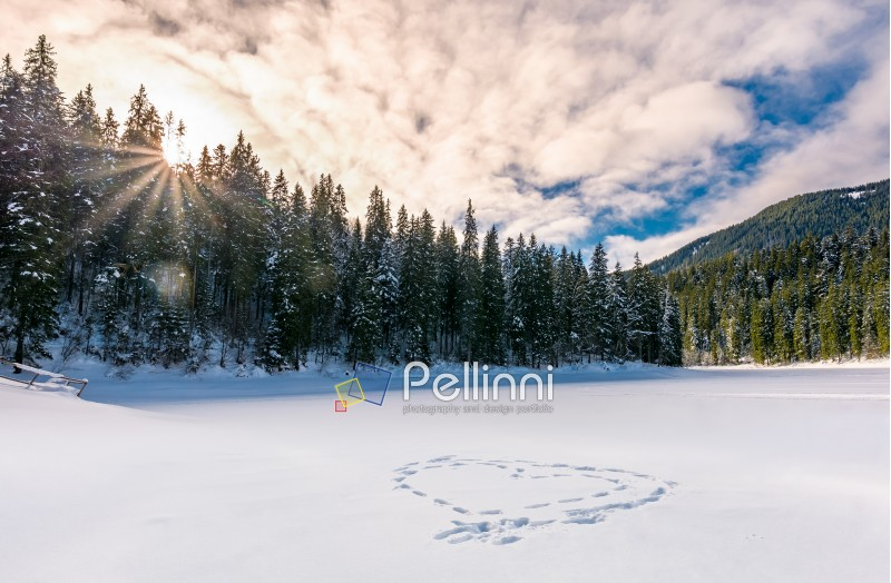 heart on the snow in spruce forest at sunset. lovely nature scenery in winter mountains. love concept