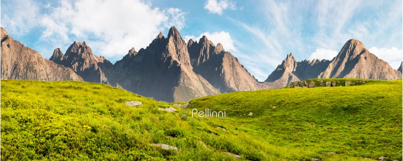 Hight Tatra mountain summer landscape composite image. grassy meadow with stones on top of the hillside near the peak of mountain range