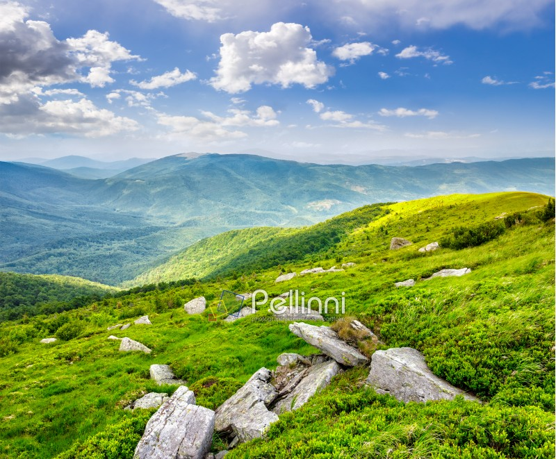 mountain summer landscape. meadow with huge stones among the grass on top of the hillside near the peak of mountain range in morning light