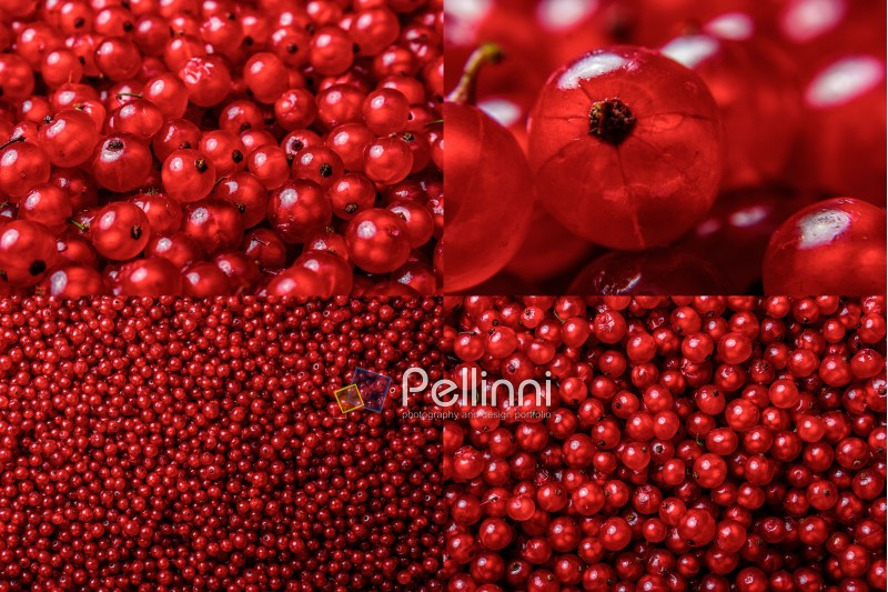 image set of red currant texture in different sizes