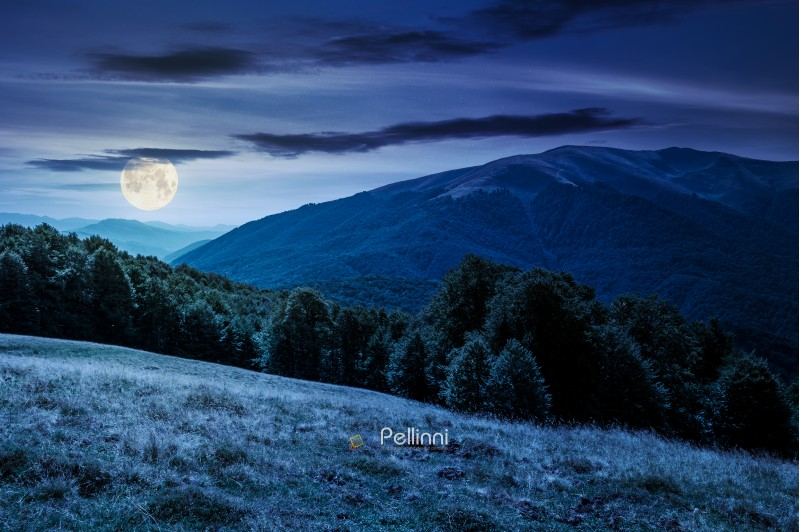 beautiful landscape of Carpathian mountains at night in full moon light. forested hills and Apetska mountain in the distance in summer