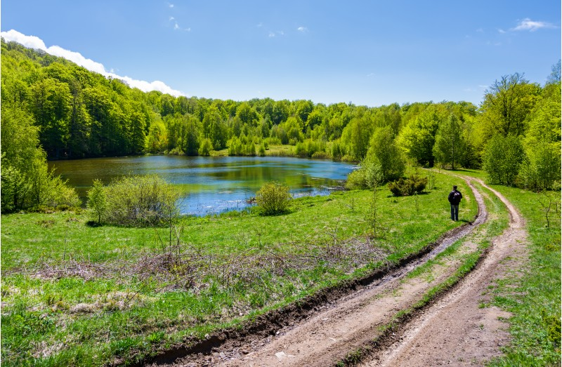 landscape with lake among the forest. countryside road down the hill. photographer observes beautiful scenery in mountains. fine springtime weather