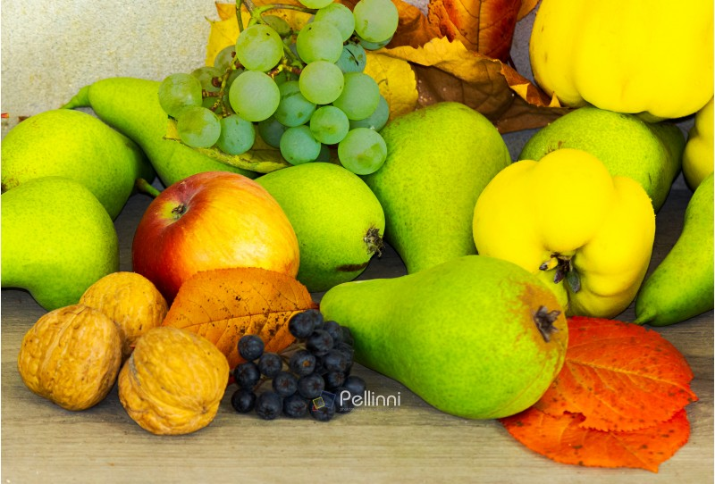 autumn fruit composition view from the top. helthy and natural food