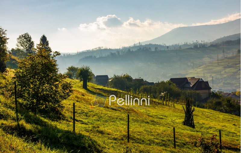 lovely Carpathian countryside in mountains. beautiful rural scenery in early autumn morning