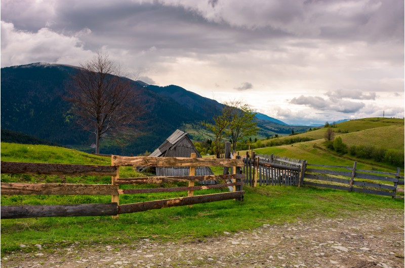 lovely rural landscape in Carpathians. wooden fence along the road on a cloudy day in mountains