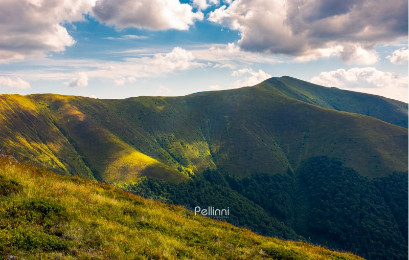 Stij peak under the cloudy summer sky. beautiful landscape of Carpathian mountains. great destination to travel.