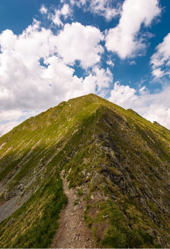 mountain ridge on a cloudy day. beautiful nature summer scenery in Fagaras mountains, Romania. concept of outdoor activity in any weather condition. lovely travel background