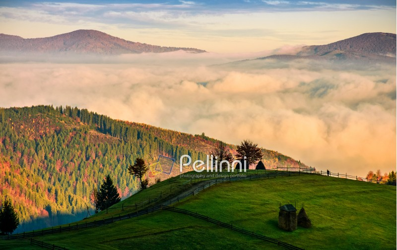 mountain rural area in autumn season. agricultural field with fence and haystack on a hillside. deep fog down in the valley. beautiful and vivid countryside landscape.