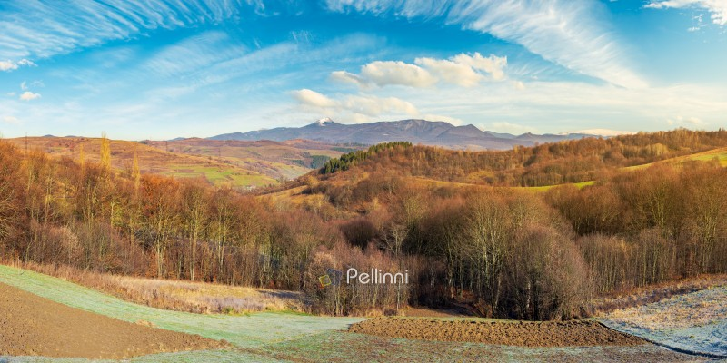 panorama of mountainous countryside in late autumn. almost leafless forest on hill. gorgeous cloudscape above the ridge with high peak in snow in the distance