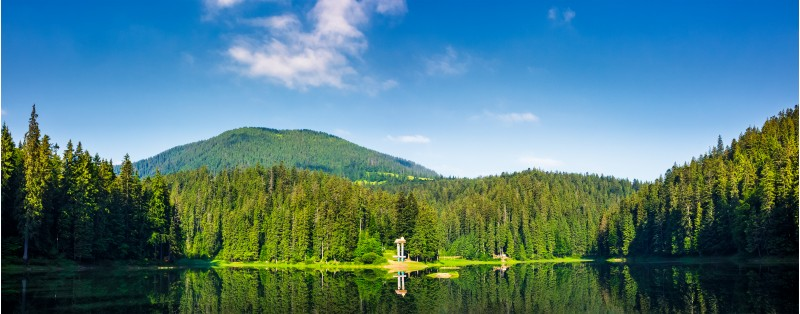panorama of Synevyr lake on summer morning. gorgeous scenery with spruce forest reflecting on a water surface. some cloud formation on a blue sky over the distant mountain. pleasing and fresh forenoon
