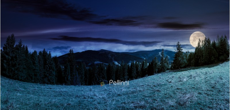 panorama of alpine forest glade at night in full moon light. beautiful early autumn landscape in Carpathian mountains. joyful vacation in wilderness