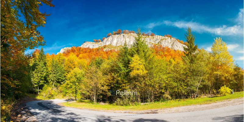 road; cliff; journey; mountain; travel; nature; outdoor; background; panorama; gorgeous; serpentine; autumn; forest; huge; rocky; formation; above; path; beautiful; weather; colorful; foliage; gorge; crag; destination; Apuseni; Romania; landscape; countryside; adventure; scaur; steep; fall; Vartop; reddish; Pietrele Negre; alpine; climb; extreme; high; majestic; pinnacle; rock wall; scenic; district; granite; difficult; magnificent; stunning; splendid