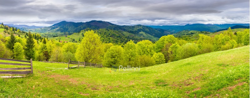 panorama of mountainous countryside in springtime. beautiful highland landscape. wooden fence on the grassy field. row of trees along the hill. rural area in the distance. overcast sky
