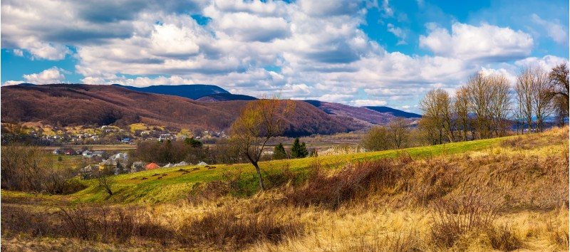panorama of mountainous rural area in springtime. lovely countryside on a cloudy day. leafless forest over the grassy meadow and village in the distance at the foot of the mountain