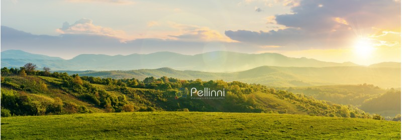 panorama of romania countryside at sunset in evening light. wonderful springtime landscape in mountains. grassy field and rolling hills. rural scenery