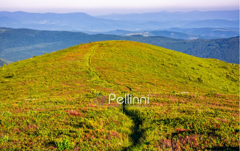 summer mountain landscape. footpath down the hill through mountain ridge to valley. huge boulders on grassy slope. beautiful Carpathian nature scene